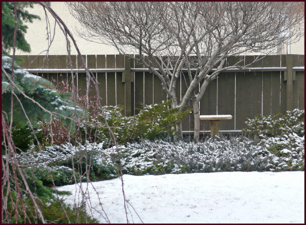 This wintry scene as viewed from my back window illustrates how a focal point can be so well merged with its setting that it appears to have 'grown there all by itself'. Photo: Sue Gaviller
