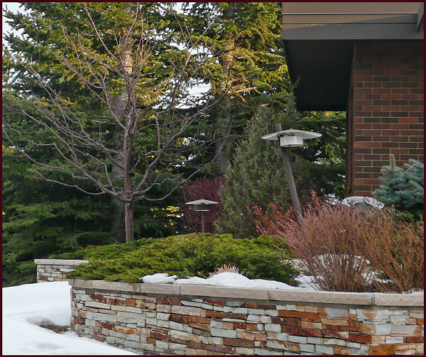 I often pass by this well done landscape on my neighbourhood walks – though it's especially attractive at this time of year, I doubt the homeowners intended for the light fixtures to be the focal point in this composition, especially since one is noticeably lopsided. Photo: Sue Gaviller
