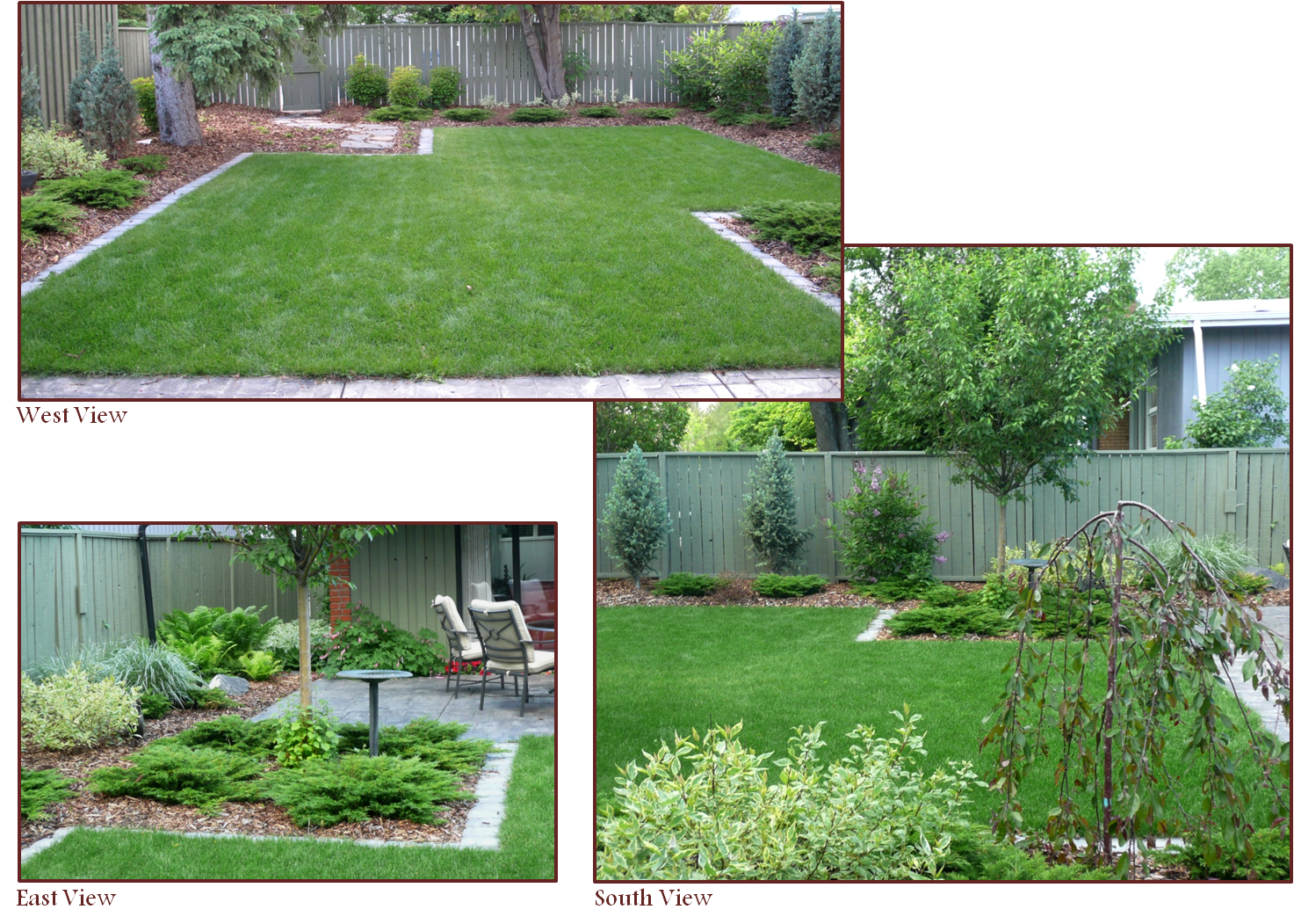 Need Landscape Designer To Tell Me What To Plant