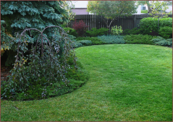 Curvilinear Garden Design Not Another Gardening Blog