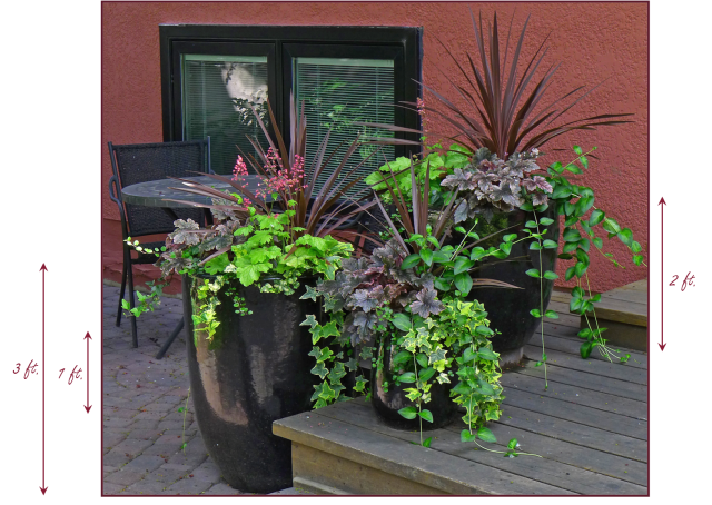 These 3 containers on my client's front deck display good proportion based roughly on the rule of thirds. Photo: Pat Gaviller