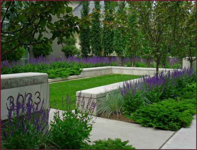 Landscape design not another gardening blog page 2 for Rectangular garden design