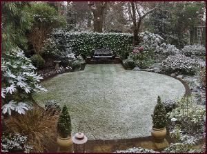 Mike's back yard winter - resample