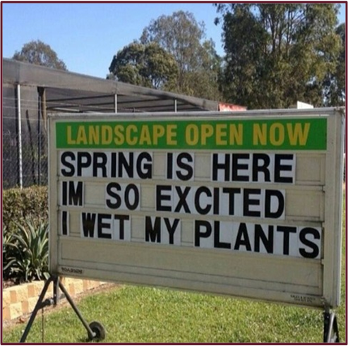 I'm so excited I wet my plants